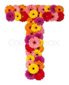 Sunflower Bouquet Letter T Flower Alphabet Isolated On White Background Stock Photo Colourbox