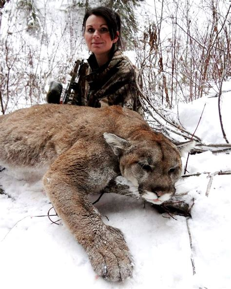 First Mountain Lion and First Bow Harvest! | Montana ... Goose Hunting Rifle