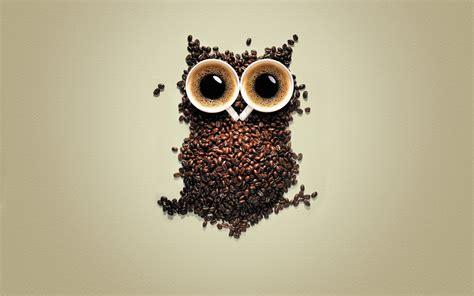 wallpaper cute owl hd cute owl wallpaper 1920x1200 45991