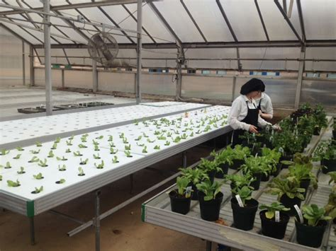 farm to school grant project lancaster county career