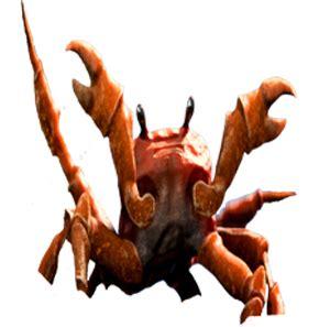 crabrave discord emoji