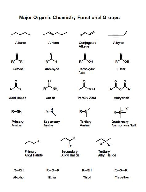 What Is An Organic Compound Image Gallery Organic Chemistry Functional Groups