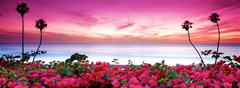 Best Cover by Best Pink Nature Cover Photo Covers