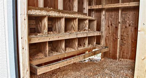 interior layout of a chicken coop 8 x 10 chicken mansion horizon structures