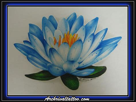 blue water lily by ritch g on deviantart