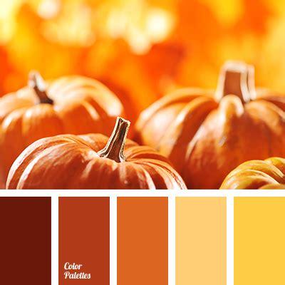pumpkin color color of pumpkin color palette ideas