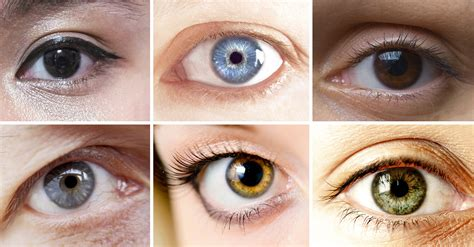 eye colors scientists say your eye color reveals information about