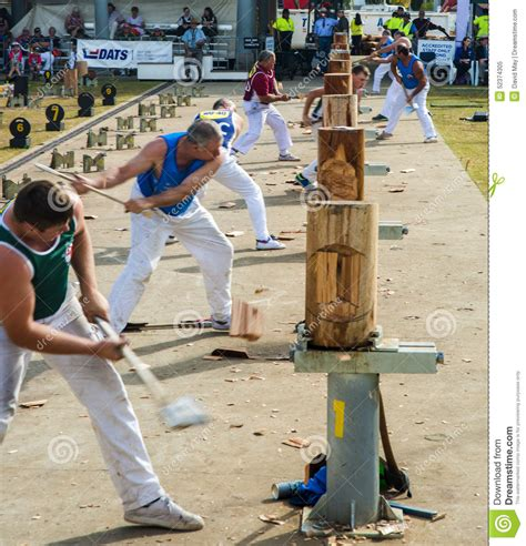 woodworking show sydney wood chopping competition editorial image image 52374305