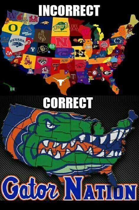 florida gator memes best 25 gator football ideas on