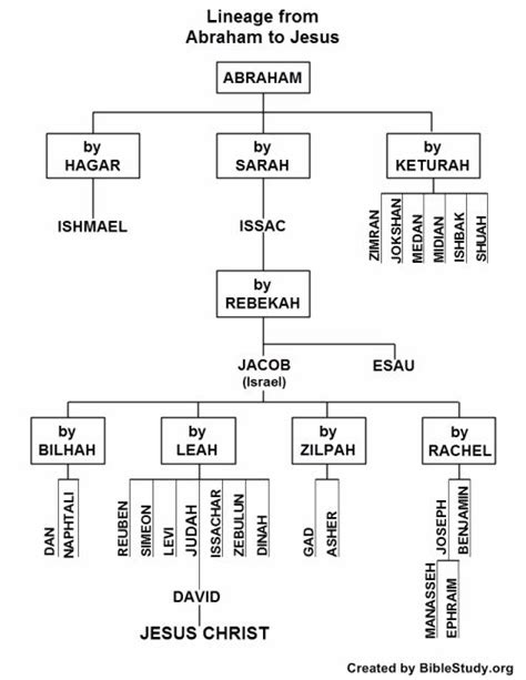printable family tree of adam and eve 22 best images about bible genealogy on pinterest best