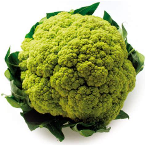 cucinare broccolo verde broccoli un pieno di vitamine per affrontare il freddo