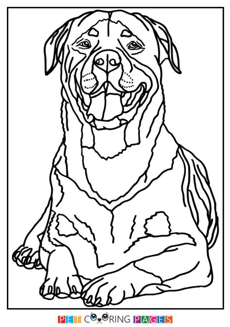 coloring pictures rottweiler dogs rottweiler puppies coloring pages sketch coloring page