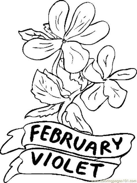 coloring pages 02 february violet 1 natural world