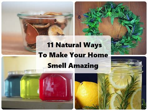 7 Ways To Make Your Home Smell by 11 Ways To Make Your Home Smell Amazing