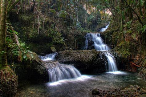 Hilo Botanical Gardens Botanical Gardens Hilo Hawaii Hdr Flickr Photo