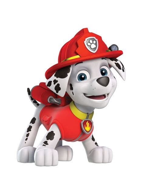 paw patrol characters paw patrol marshall and paw patrol badge paw patrol marshall paw patrol marshall von spin master