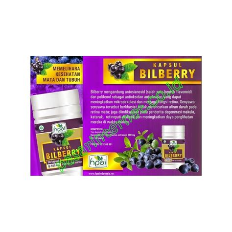Kapsul Bilbery Hpai 1 bilberry kapsul hpai premier herbal shop