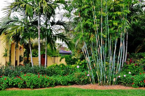west south florida landscaping ideas pictures to pin on