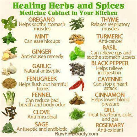 spices and their benefits books webmd lists our forefathers touted the