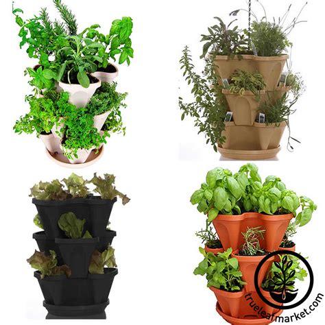 indoor herbal garden herbal garden kit home outdoor decoration