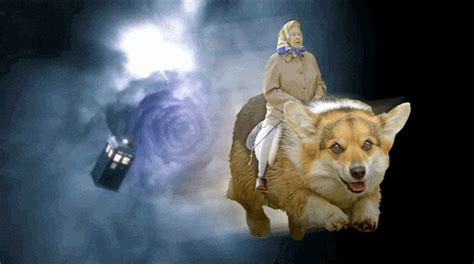 queen corgi doctor who was renewed for another season let s