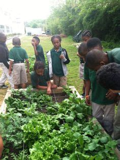 School Gardening Club Ideas 1000 Images About Resources On School Gardens Gardening And Lesson Plans