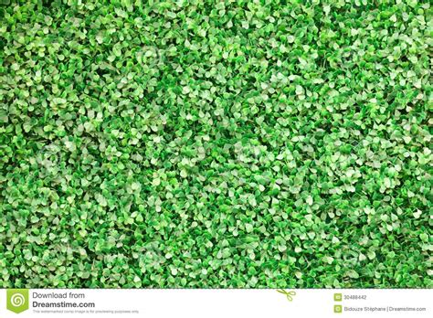 plastic leaves background stock photography image 30488442