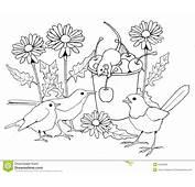 P&225ssaros E Ratos Com Flores P&225gina Colorindo Ilustra&231&227o