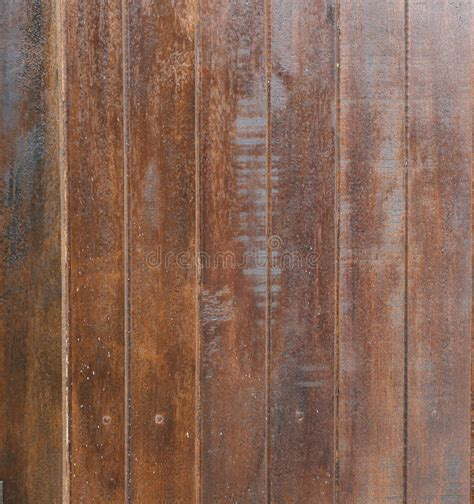 K Fer Im Holz 4552 by Holzkfer Bilder Awesome Alte Graue Holz Textur Aus