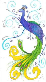 easy colorful drawings simple colorful peacock drawing cliparts co