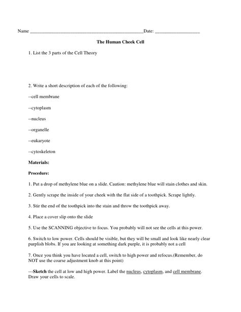 Looking Inside Cells Worksheet Answers by Cheek Cell Lab