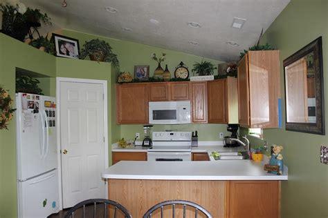 golden oak cabinets kitchen paint colors paint color that goes with golden oak cabinets scifihits com