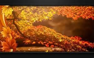 les fonds d 233 cran de la saison d automne