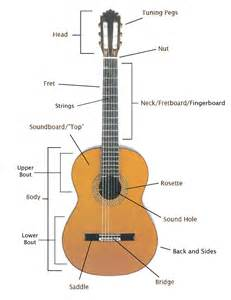 basic knowledge of guitar