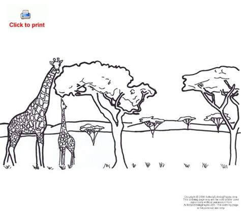 Animal Safari Coloring Pages by Safari Animals Coloring Pages