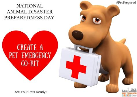 Day Kopi Ready To Drink Pet national animal disaster preparedness day are your pets ready