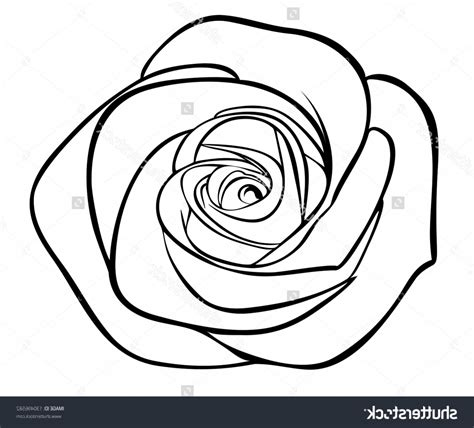 Sketch Outline by Outline Drawing Drawing Gallery