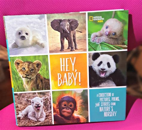 hey baby a collection of pictures poems and stories from nature s nursery national geographic books enjoy learning new facts and jokes with national