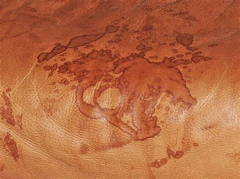 water stain on leather couch leather blog learn all about leather how to clean