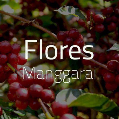 Mesin Kopi Arabica green bean kopi arabica flores manggarai 1 kg otten coffee jual mesin grinder alat kopi
