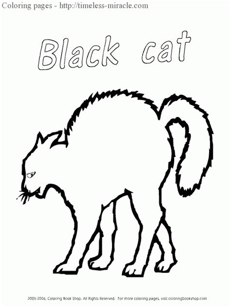 blank cat coloring page black cat coloring pages timeless miracle com