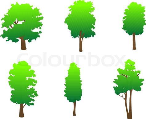trees symbolism set von baum symbole als zeichen oder embleme stock