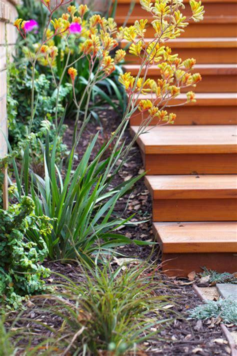 All Seasons Gardening by Wilkes Residence Landscape San Luis