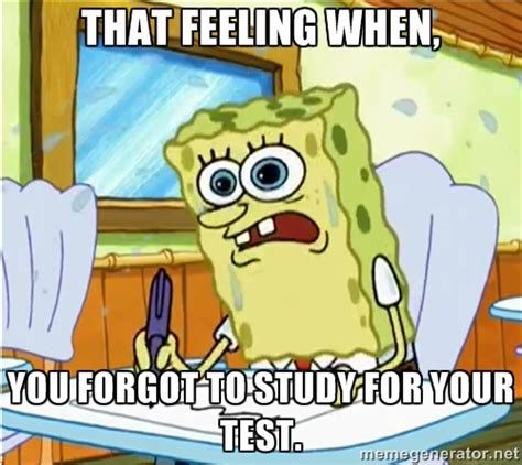 Spongebob Homework Meme - spongebob homework meme homework memes pictures to pin on