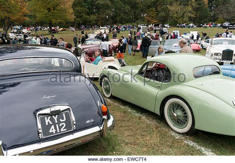 antique jaguar jaguar car vintage 1950s stock photos jaguar car vintage