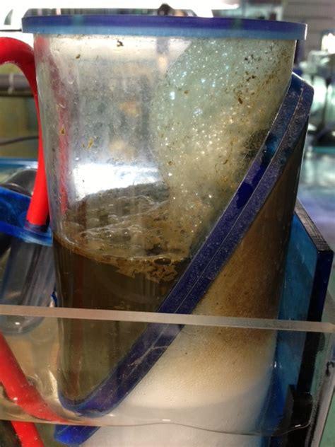 Kalung Diffuser Collection H14 deepwater aquatics hob protein skimmer by jns aquanerd