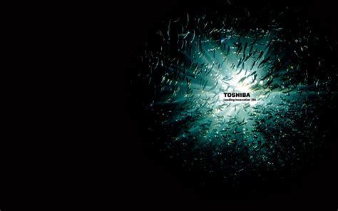 free download themes for windows 7 toshiba wallpapersku toshiba wallpapers