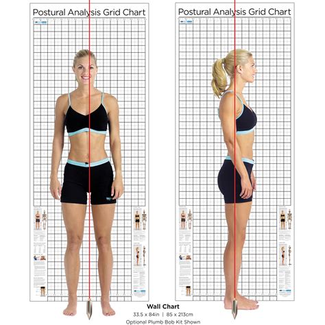 Plumb Line Assessment by Wall Size Posture Chart Kent Health Systems