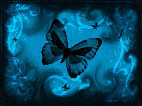wallpaper background butterfly wallpapers blue butterfly art wallpapers