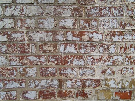 how to paint exterior brick walls file painted brick wall jpg wikimedia commons